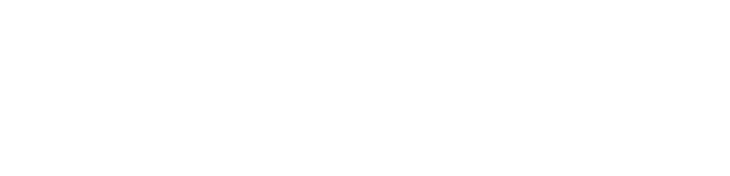 High Security Group logo